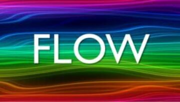 Flow State Zone