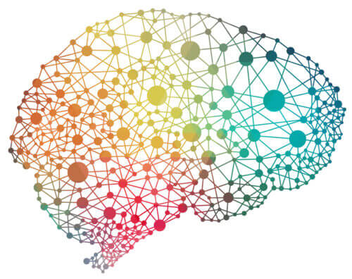 Neuroscience Science of Actual physical Component of Mind