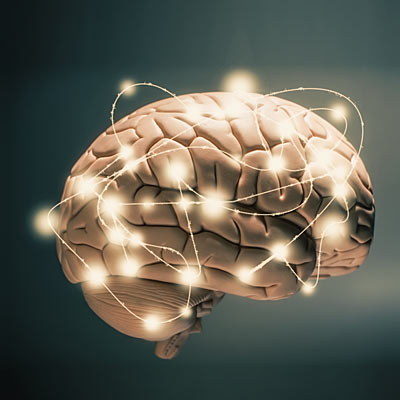 Psychology The research into your brain